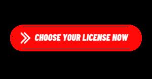 Viddyoze License
